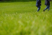 Vista parziale di persone che camminano sul prato, nordic walking — Foto stock