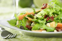 Plate with dried tomatoes and lettuce leaves in plate on table with fork — Stock Photo