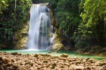 Cascada en el bosque tropical salvaje - foto de stock