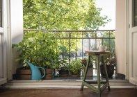 Casa balcone con piante in vaso, annaffiatoio e caffè del mattino — Foto stock