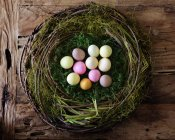 Colorful quail eggs in nest — Stock Photo