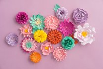 Creative colorful paper flowers isolated in pink background — Stock Photo