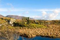 Paysage d'Irlande avec une cabine de cabane en bois — Photo de stock