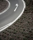 Asphalt curve road with arrow sight, turn left — Stock Photo