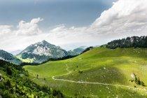 De montanhas e colinas de grama verde, Wendelstein, Baviera — Fotografia de Stock
