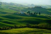 Green landscape of tuscany, Italy nature — Stock Photo