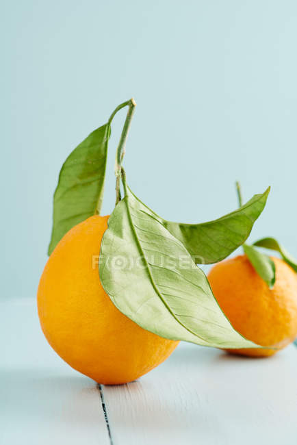 Frutas tropicales, mandarina en estudio - foto de stock