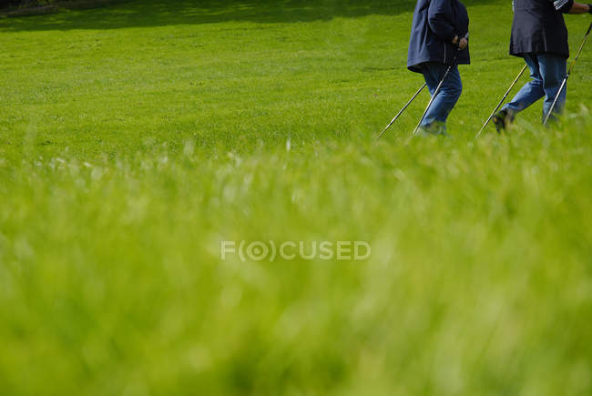 Partial view of people walking on meadow, nordic walking — Stock Photo