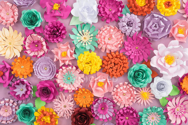 Creative colorful paper flowers, full frame — Stock Photo