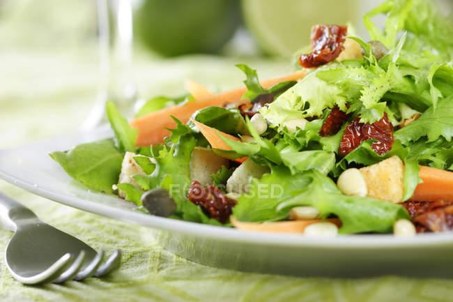 Plaque avec laitue et tomates séchées laisse en plaque sur la table avec une fourchette — Photo de stock