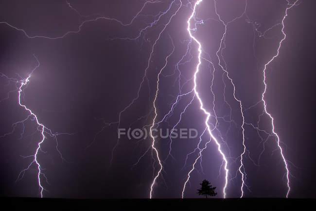 Фиолетовый дождливая небо с молнии и грозы в ночное время, дерево на горизонте — стоковое фото