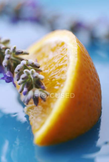 Lavanda en lavanda media naranja - foto de stock