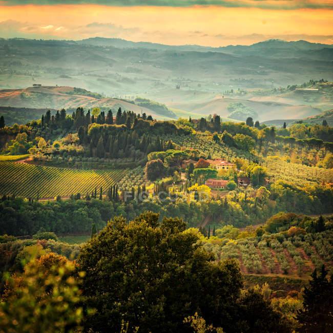 Paisaje verde de tufo, Italia naturaleza - foto de stock