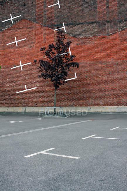 Ladrillo de construcción de paredes y árboles en la calle con estacionamiento - foto de stock