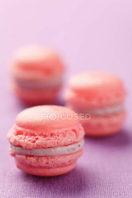 Рожевий французький macarons на purple поверхні — стокове фото