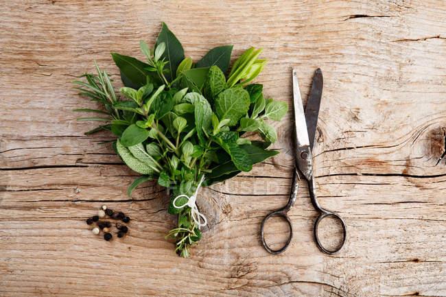 Vecchie forbici sul tavolo in legno ed erbe verdi — Foto stock