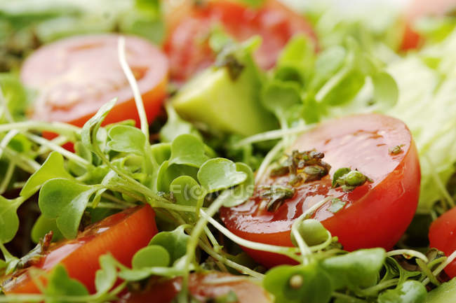 Image plein cadre de salade fraîche aux tomates cerises et choux vert — Photo de stock