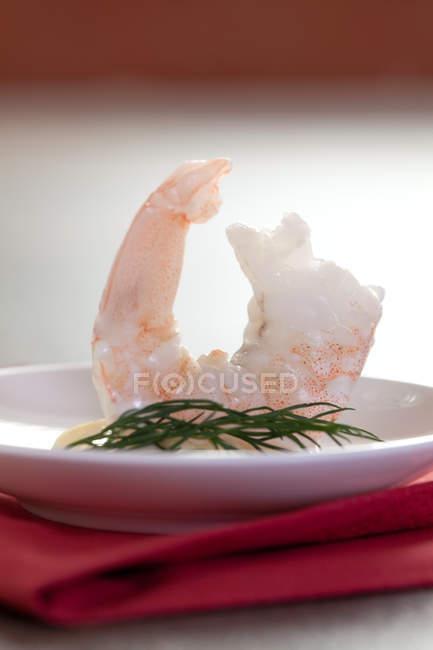 Meeresfrüchte, Vorspeise Shrimps mit Mayonnaise und Dill auf Platte — Stockfoto