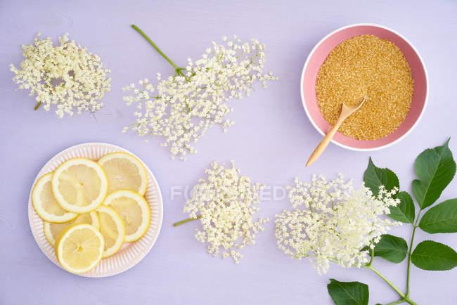 Preparando a casa feita de limonada com os limões e açúcar mascavo — Fotografia de Stock
