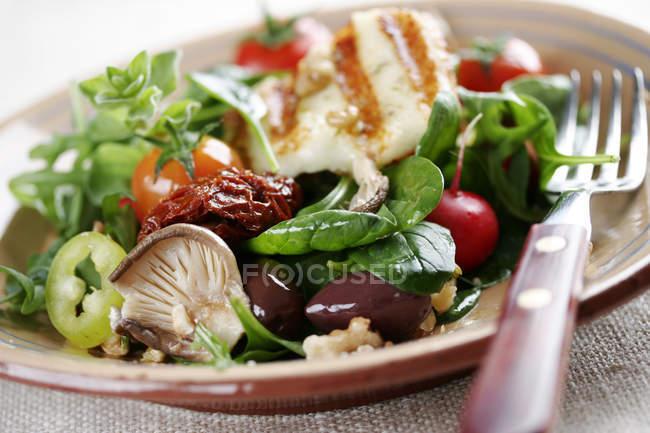 Salada halloumi em prato com garfo, close-up — Fotografia de Stock
