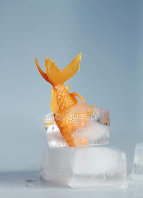 Giocattolo di plastica pesce dorato bloccato in cubo di ghiaccio — Foto stock