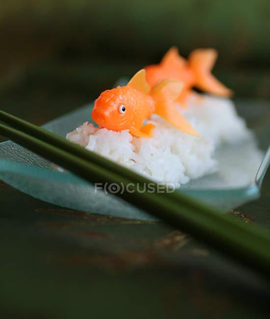 Humor and bizarre, goldfish and sushi — Stock Photo