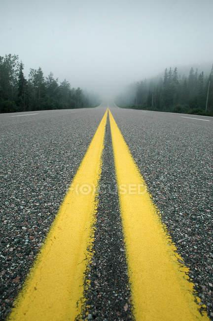 Lignes jaunes sur la route goudronnée — Photo de stock