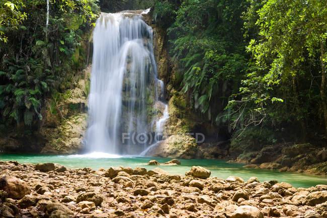 Cachoeira na floresta tropical selvagem — Fotografia de Stock