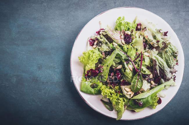 Листовой салат в пластине, непосредственно выше — стоковое фото