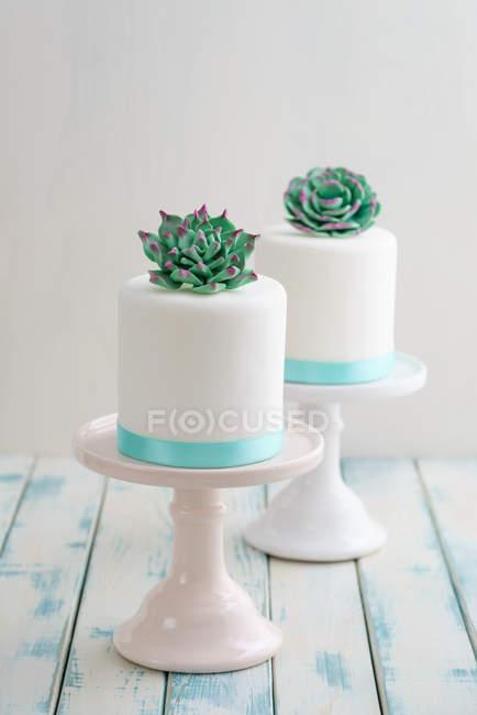 Dos pasteles de boda con flores de plantas suculentas de mazapán decoradas en la parte superior - foto de stock