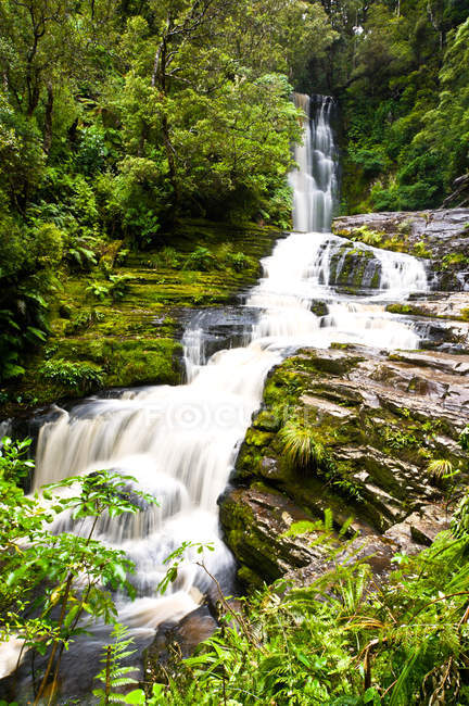 Waterfall flow in rain forest — Stock Photo