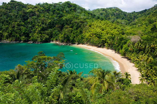 Caribbean englishmans bay, green tropical trees and ocean water — стокове фото