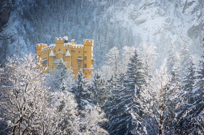 Зима в гори, замок СС «Гогенштауфен» — стокове фото