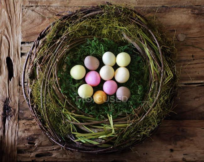 Ovos de codorna colorido no ninho — Fotografia de Stock