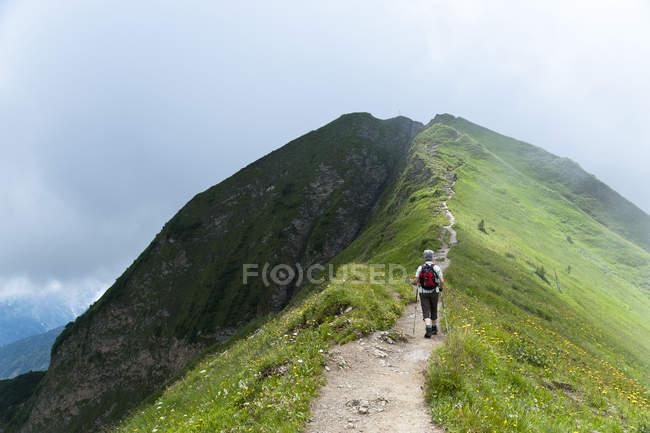 Vue arrière du randonneur en montagne — Photo de stock