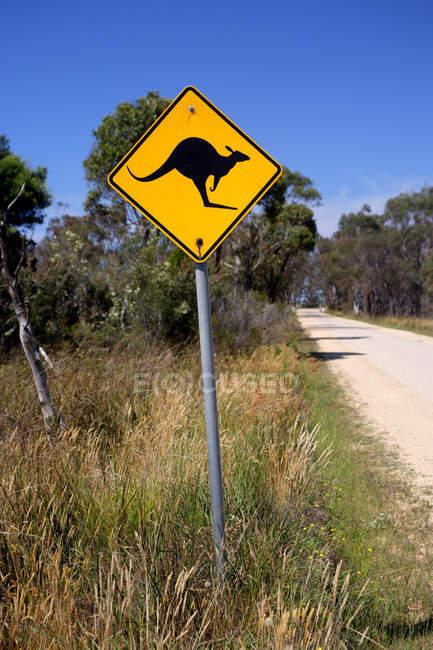 Warning sign with kangaroo in Australia — Stock Photo
