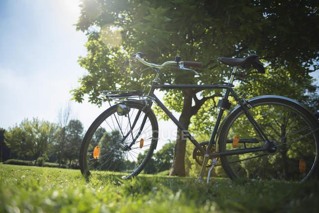 Bicicletta parcheggiata sul prato erboso verde nel parco — Foto stock