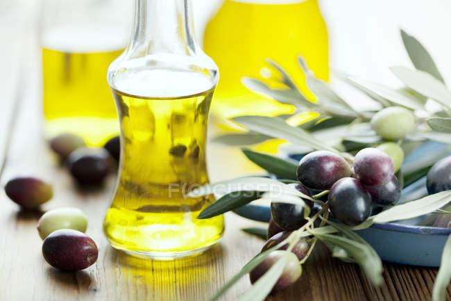 Черный оливковая ветвь и стеклянные бутылки с желтого масла — стоковое фото