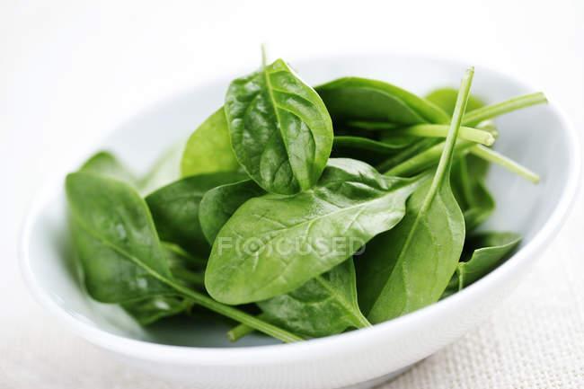Зелений шпинат свіжий листя в білі чаші Тарілка — стокове фото