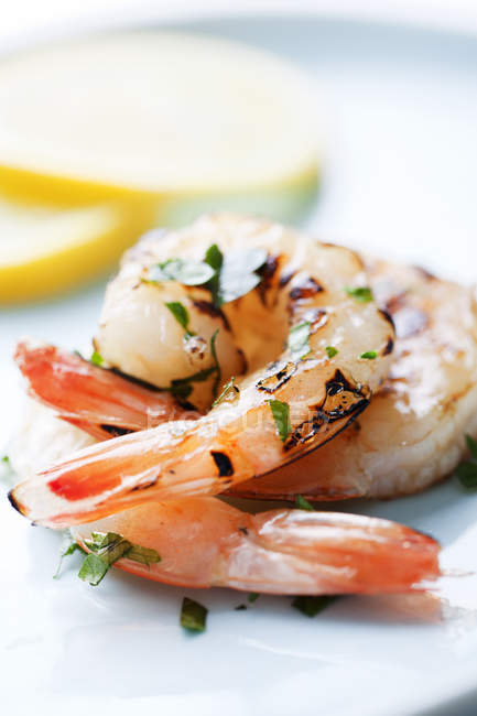 Closeup of shrimps served with sliced lemon and herbs on plate — Stock Photo