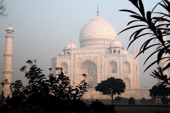 Taj mahal building dome and facade, plants on foreground — Stock Photo