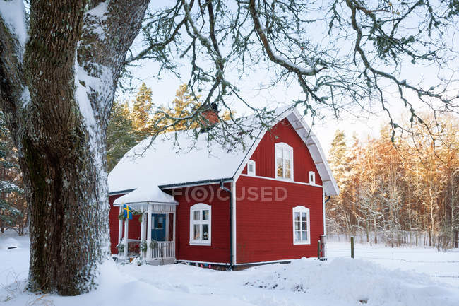Casa stuga rossa nella foresta innevata — Foto stock