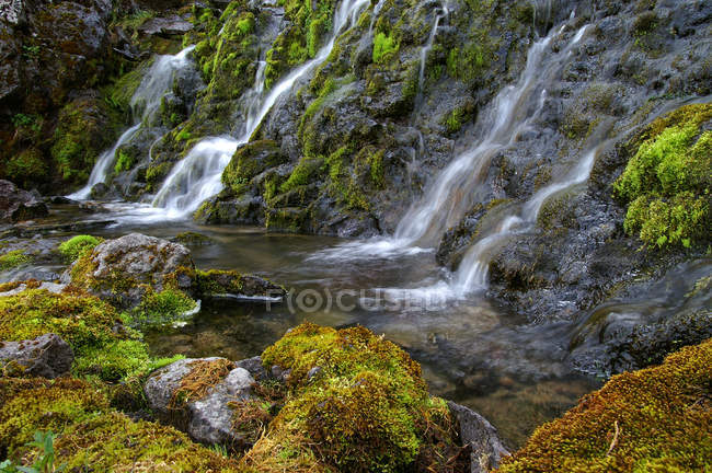 Flowing river and waterfalls — Stock Photo