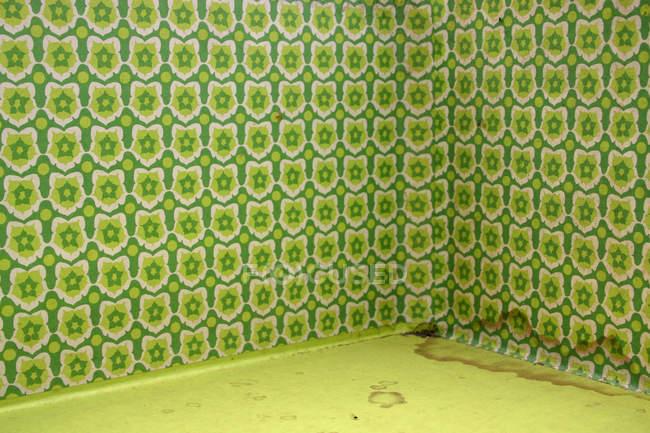 Старый шаблон старомодный зеленые обои на стены в комнате — стоковое фото