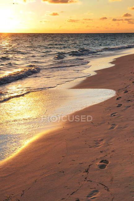 Следы на песчаном пляже в море вода с отражением заката — стоковое фото
