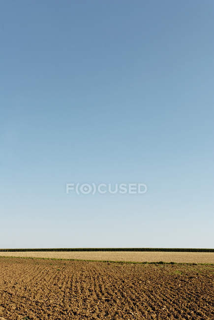 Arable countryside field, agriculture — Stock Photo