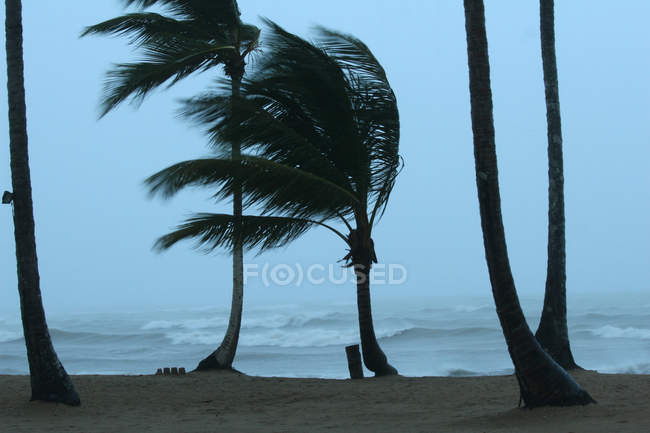 Plage des Caraïbes au soir par temps venteux et tempête dans l'océan — Photo de stock
