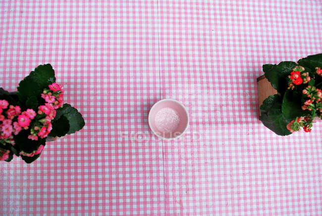 Top view on pink tablecloth with flower pots and pink empty bowl — Stock Photo
