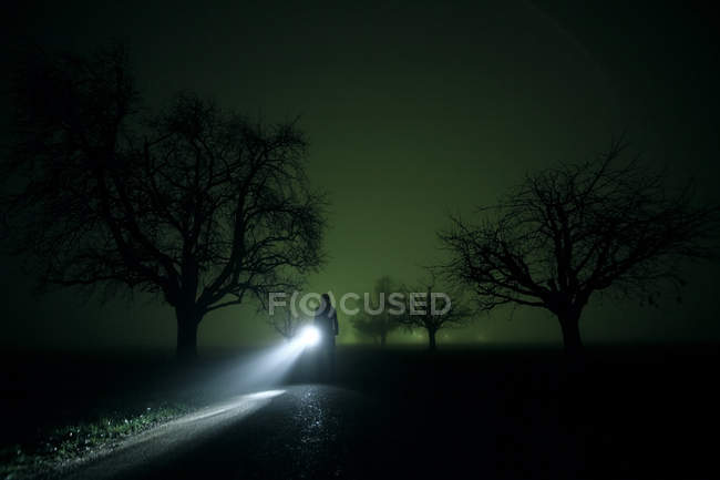 Night in forest, silhouette of person with lamp light standing on road — Stock Photo