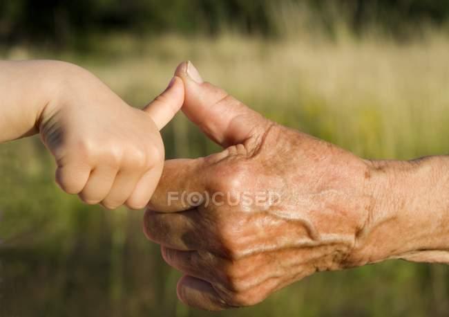 Vue partielle de l'aîné et enfant mains gesticulant pouces vers le haut avec les doigts à l'extérieur — Photo de stock
